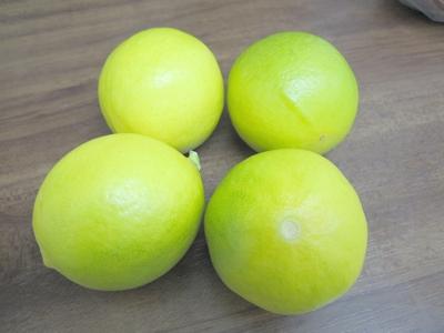 limone2009.jpg